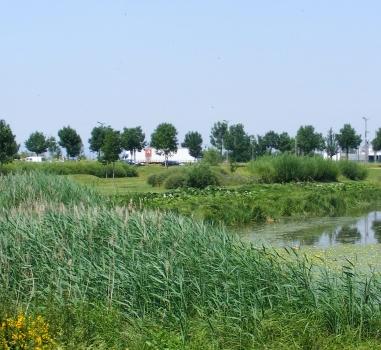 La gestion de l'eau au cœur d'un parc d'activités